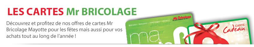 Les cartes Mr Bricolage | Découvrez et profitez de nos offres de cartes Mr Bricolage Mayotte pour les fêtes mais aussi pour vos achats tout au long de l'année !